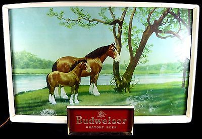 """Vintage 1950's Budweiser Brand Beer Clydesdale Horse & Foal 20""""l Lighted Sign"""