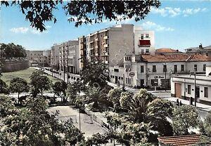 Cartolina-Postcard-Grosseto-Viale-Ximenes-1960-VG