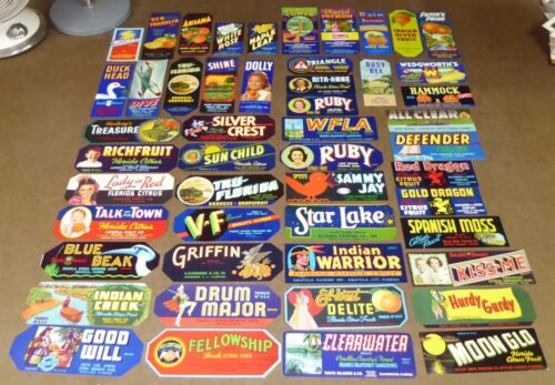 50 ORIGINAL DIFF CRATE LABELS VINTAGE LOT FLORIDA ORIGINAL CITRUS SMALL SIZE NOS