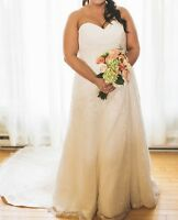 Plus sized wedding dress