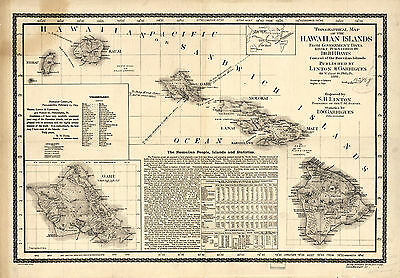 1893 Topographical Map Hawaiian Islands Vintage Wall Art Poster Print Decor