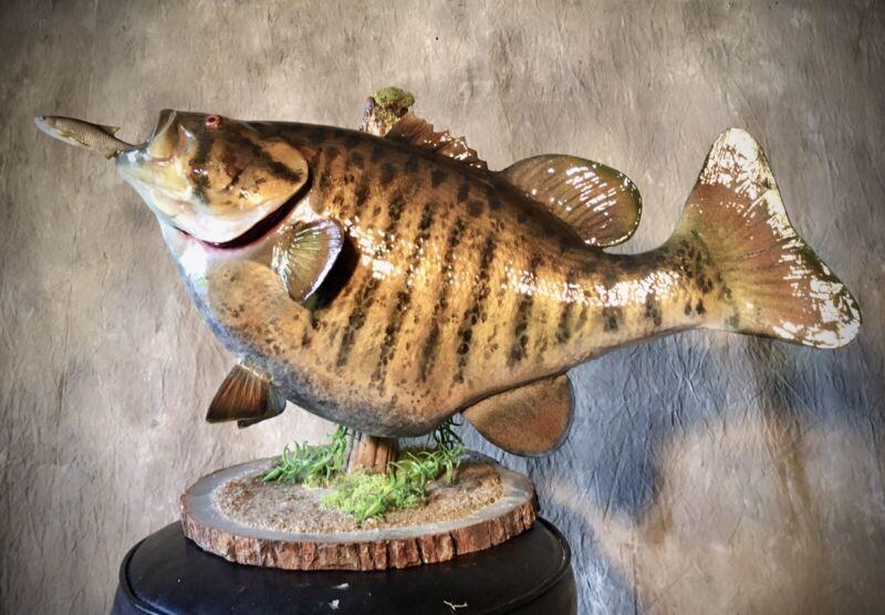 Smallmouth Bass Taxidermy Replica Fish Mount!