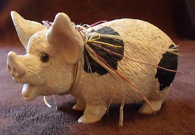 Rarität: geflecktes Schwein mit Riesenohren, aus USA, Schweine, Sau, Ferkel, 5