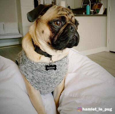 Adjustable Dog Clip Collar - Adjustable Nylon Dog Collar with Clip Buckle Dog Training