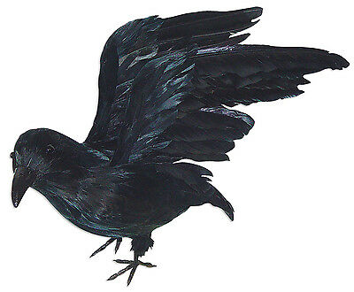 Large Standing Crow with Open Wings Halloween Decoration Prop NEW