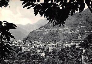 Cartolina-Postcard-Altagnana-Massa-Panorama-anni-039-50