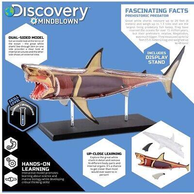 Discovery Mindblown 4D Great White Shark Anatomy Kit, Interactive Marine Biology Sesame Street Sheer