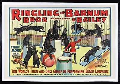 RINGLING BROS BARNUM BAILEY ✯ CineMasterpieces BLACK CAT LEOPARDS CIRCUS POSTER