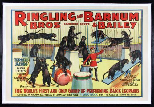 RINGLING BROS BARNUM BAILEY ✯ CineMasterpieces BLACK CAT LEOPARDS CIRCUS POSTER