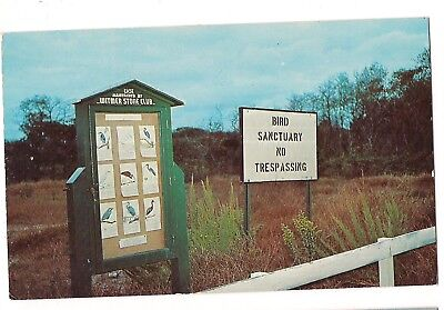 BIRD SANCTUARY No Trespassing SIGN Heronry Stone Harbor New Jersey NJ Postcard