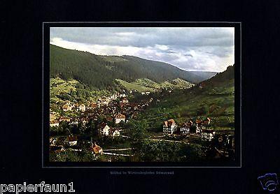 Bad Wildbad Schwarzwald XL Fotoabbildung von 1924 Black Forrest  +