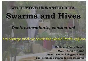 BEE SWARM AND HIVE REMOVAL Baldivis Rockingham Area Preview