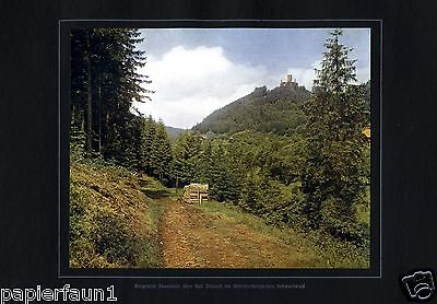 Burgruine Zavelstein über Bad Teinach XL Fotoabbildung von 1924  +