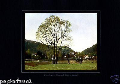 Hirsau im Nagoldtal XL Fotoabbildung von 1924 Nagold Schwarzwald Black Forrest +