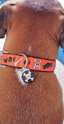 Dog Halloween Collar Skulls and Bats w Light Up Charm Size Large