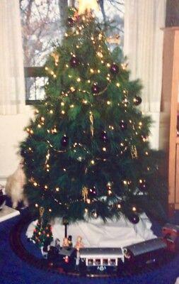 LGB Steam ChristmasTrain Set #72545 Plus Christmas Caboose #44660 & more