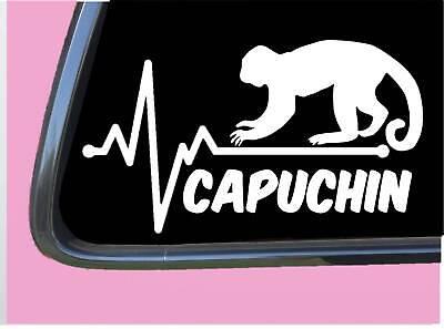 Old World Monkeys (Capuchin Monkey Lifeline TP 726 vinyl 8