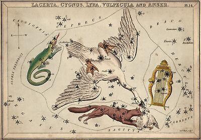 Star Map Lizard Swan Lyre And fuchs Original Copperplate Leigh 1830