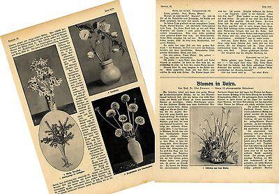 Blumen in Vasen *  Beitrag v. Prof.Udo Dammer mit 12 Aufnahmen von 1909