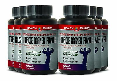 Muscle Tissue Repair   Muscle Maker Plus   Fat Burner For Men   6 Bottles