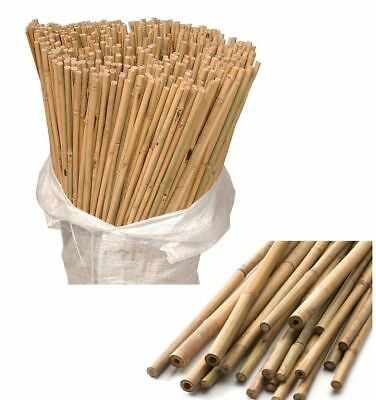 Pack of 200 Wooden Natural Bamboo Garden Canes Plant Canes Strong Support 6ft