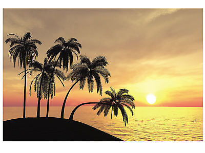 Hawaiian SUNSET Tropical Backdrop PHOTO PROP Party Pics Beach Luau Decoration