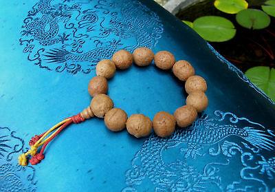 Buddha Bracelet Handmala -mala - Prayer Chain Made of Real Bodhi-Samen from