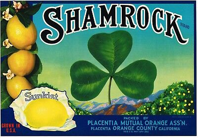 GENUINE SHAMROCK LEMON CRATE LABEL PLACENTIA IRISH LUCKY CLOVER 1930S VINTAGE