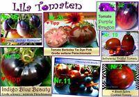 ♥ Blaue Lila Tomaten Samen Alte Sorten Gemüse BIO Garten Rarität Eimsbüttel - Hamburg Schnelsen Vorschau