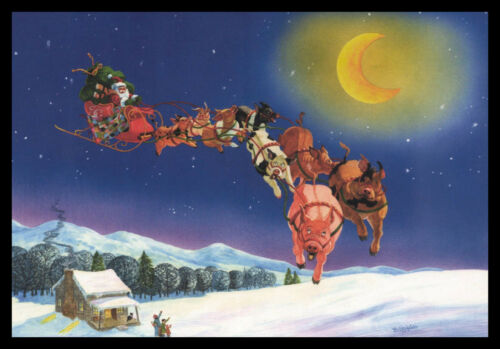 1066GC Wells & Trigg - Pig Santa - Christmas Greeting Card