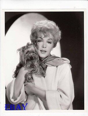 Stella Stevens w/dog VINTAGE Photo circa 1961