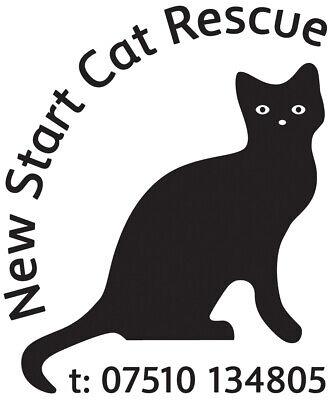 New Start Cat Rescue