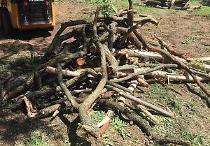 Free Firewood/Dry wood to take home! Woodridge Logan Area Preview