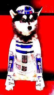 NEW! Disney STAR WARS! R2D2 Dog Costume S Chihuahua Pomeranian Yorkshire Terrier