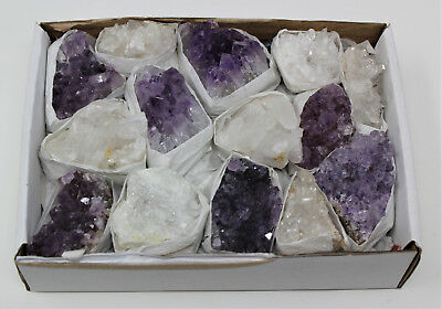 Wholesale Bulk Natural Amethyst & Clear Crystal Quartz Clusters: 9-14 Piece Lot ()