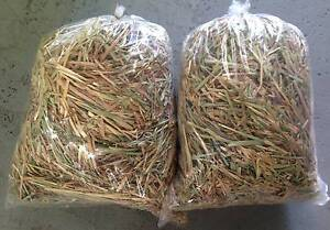 Bags of Straw, Oaten Hay and Lucerne available! St Marys Penrith Area Preview