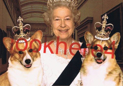 QUEEN ELIZABETH II PHOTO 5X7 Welsh Corgi Dogs Royal Collectibles London England