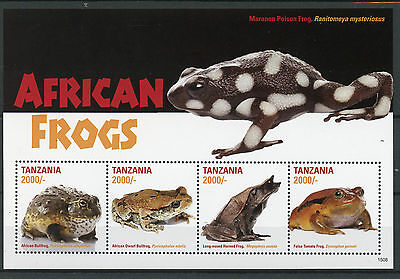 Tanzania 2015 MNH African Frogs 4v M/S African Dwarf Bullfrog Horned Frog Stamps