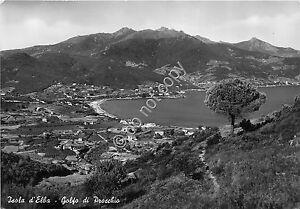 Cartolina-Postcard-Elba-Golfo-di-Procchio-Panorama-1954
