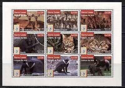 SIERRA LEONE 1995, WILD ANIMALS, SIERRA CLUB Scott 1796 SHEET 9 DIFFERENT, MNH