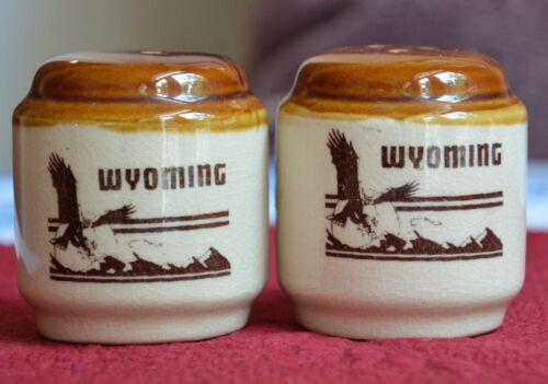 Vintage WYOMING Salt & Pepper Shakers Art Pottery Ceramic Ready to Use Souvenir