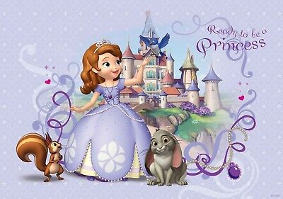 7x5ft castle Princess Sofia  First birthday baby shower backdrop  background - Princess Background