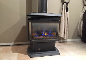 Free Standing Gas Fireplace / Stove