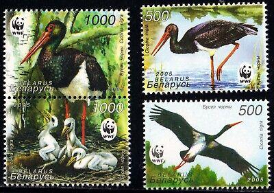 2005. Belarus. BIRDS. Black stork (WWF).  Set, MNH