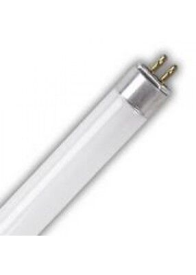 "EIKO F8T5/CW 8W T5 Cool White 4100K 12"" Preheat Fluorescent Lamp - Pack of 2, used for sale  Burlington"