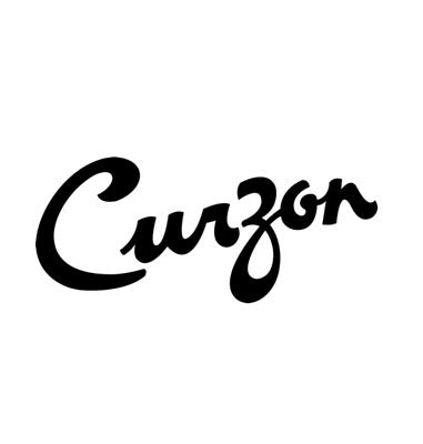 Curzon Clevedon Community Centre for the Arts Ltd