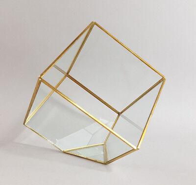Vitrina Cristal Metal Oro Latón Bote Cristal Vitrina Glasbox Joya Plantas