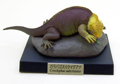 Kaiyodo Museum Capsule Danger Q American Coral Snake Rubber Figure