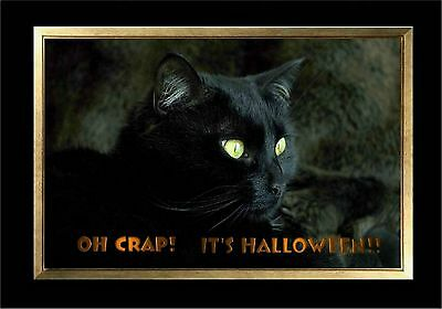 Halloween Black Cat Eyes (MAGNET HALLOWEEN Black Cat Green Eyes Oh Crap It's)