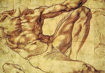 AK 174: Michelangelo, Studie für die Erschaffung des Adam
